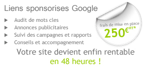 referencement google Adwords